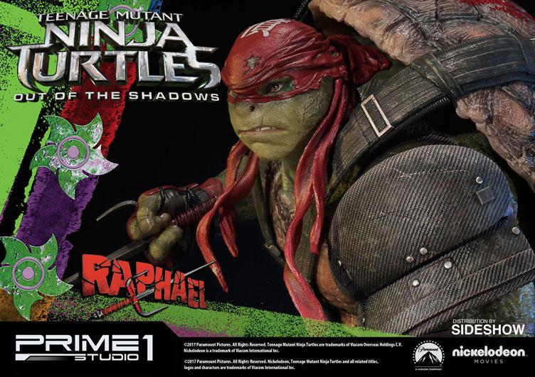 Teenage Mutant Ninja T...