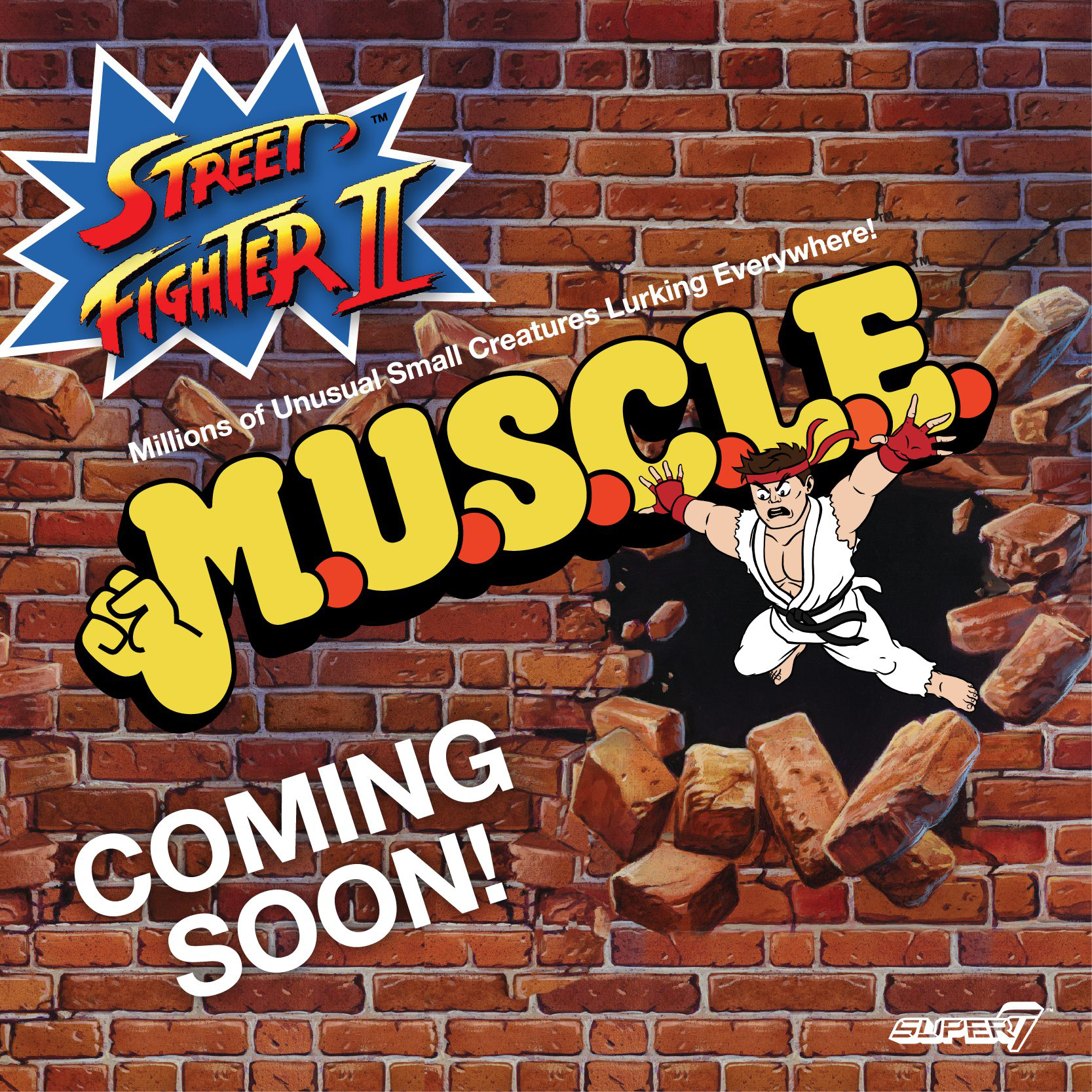 super7-street-fighter-muscle-figures