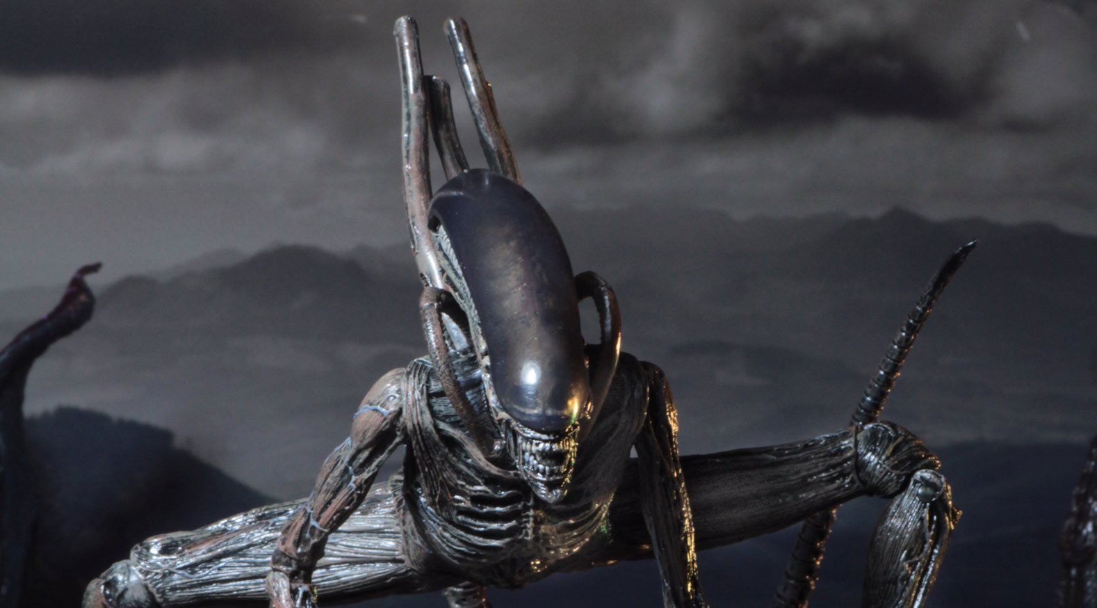 aliens-covenant-xenomorph-figure-by-neca