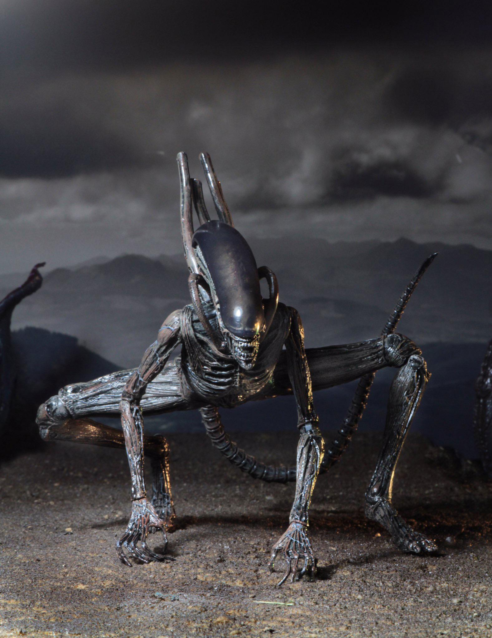 aliens-covenant-xenomorph-figure-neca